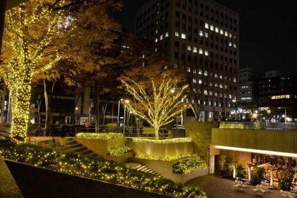 西新宿のクリスマスイルミネーション、新宿野村ビルやヒルトン東京など10か所で点灯