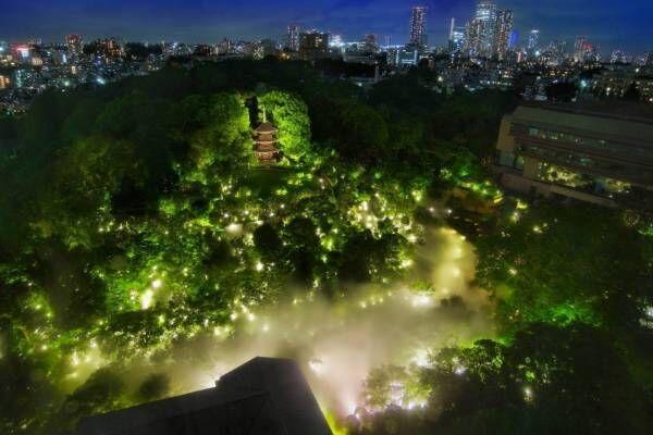 """ホテル椿山荘東京""""触れる雲海""""や約1万本の椿が庭園に、幻想的なライトアップも"""