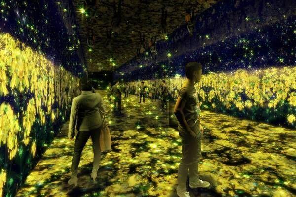 ハウステンボスの新エリア「光のファンタジアシティ」ネイキッド手掛けるデジタルアトラクション