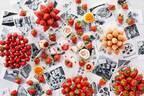 「ストロベリー アフタヌーンティー」ハイアット リージェンシー 大阪で、ブランド苺食べ比べやスイーツ