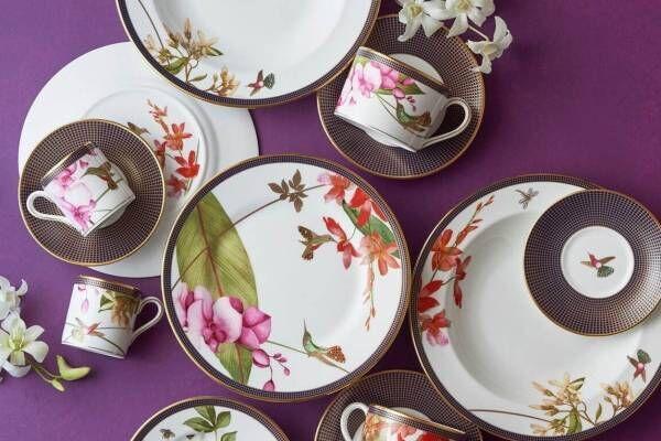 """ウェッジウッド""""羽ばたく宝石""""ハチドリの新作テーブルウェア、ミツバチ&蘭の花も描いて"""