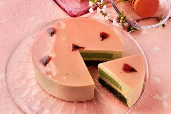 """クリオロの桜スイーツ、""""花びら舞い落ちる""""「さくら抹茶」「さくら苺」ケーキ"""