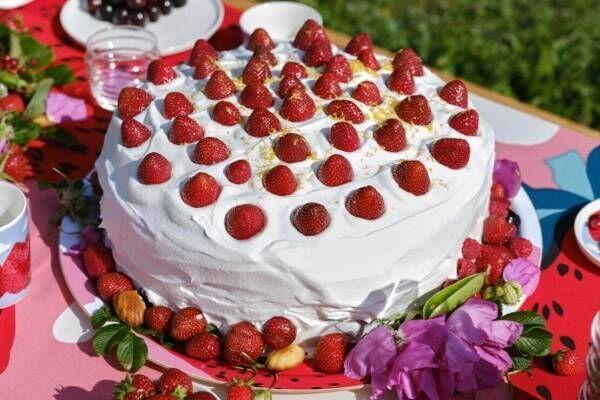 """マリメッコ""""果物&野菜""""モチーフのテーブルウェア、アーカイブ復刻「イチゴの山」柄も"""