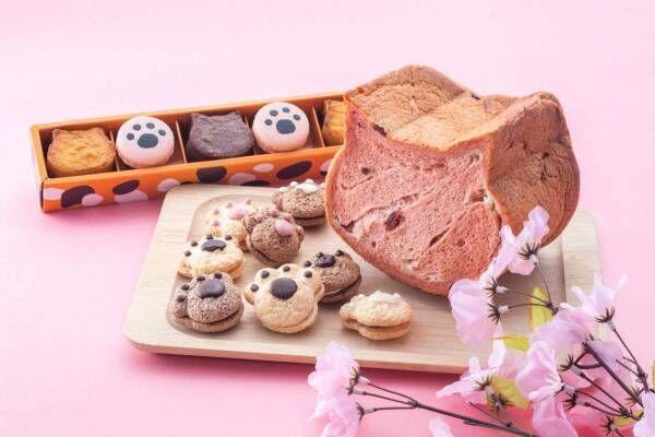 ねこ型食パン&肉球モチーフの焼菓子入り「春のいろねこセット」大阪新阪急ホテルで