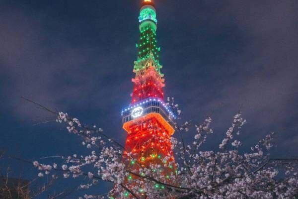グッチ×東京タワーのライトアップ「グッチ ハナミ」お花見気分を楽しむ期間限定ARも