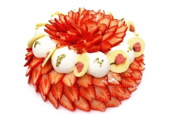 """カフェコムサ限定「いちごと桜のショートケーキ」""""満開の桜""""のように並ぶ苺×桜あんクリーム"""