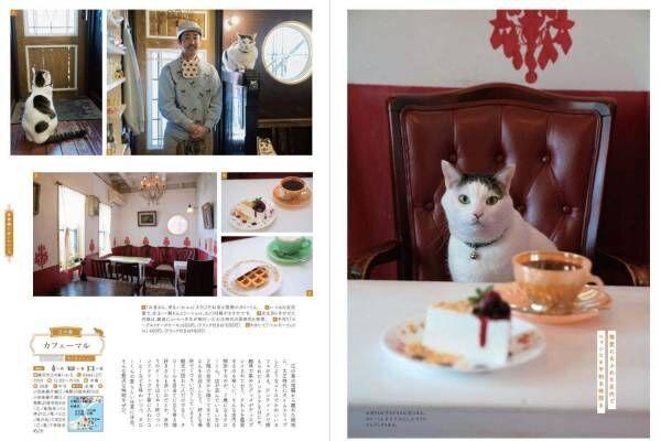 書籍『喫茶店の本 横浜・鎌倉・湘南』名喫茶のパフェ&ナポリタン特集、看板ねこの紹介も