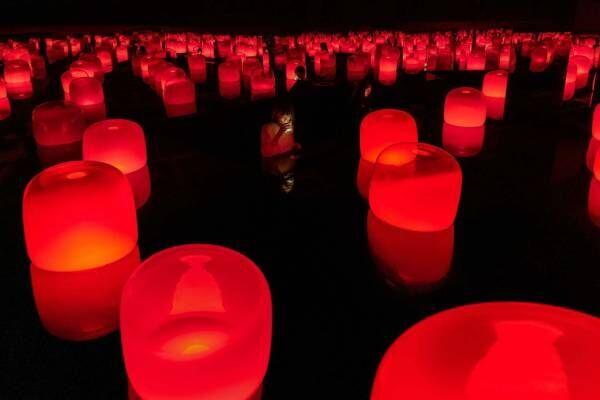 """チームラボ""""光の共鳴""""茶とランプの展覧会を岡山で、地下の茶室で連鎖する光の演出"""