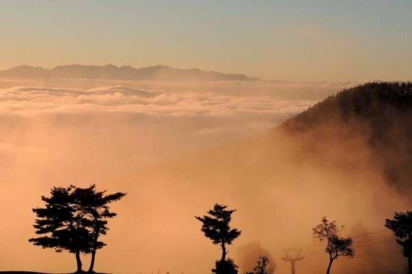 """「リワイルド ゼッケイ グランピング リゾート」長野に、雲海など絶景を楽しむ""""天空キャンプ場"""""""