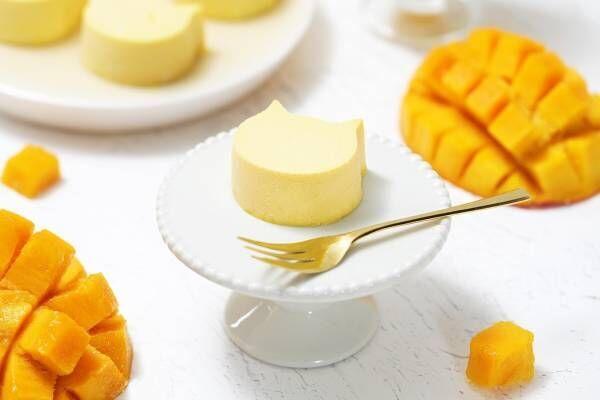 """ねこねこチーズケーキからマンゴーの限定フレーバー、濃厚チーズと""""爽やか""""フルーツの旨味"""