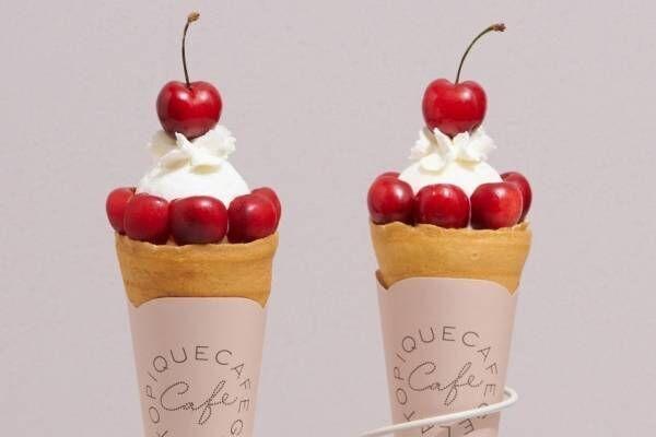 ジェラート ピケ カフェからアメリカンチェリーの限定クレープ&ソフトクリーム