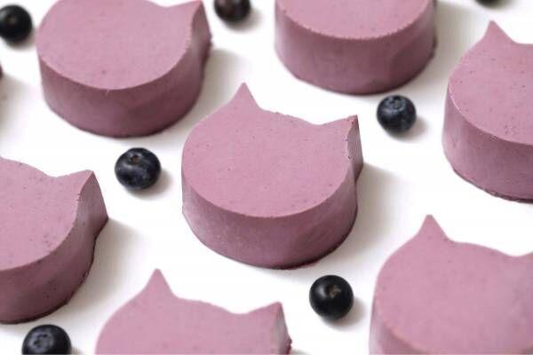 ねこねこチーズケーキ新作、甘酸っぱいブルーベリー×ヨーグルトの「にゃんチー ブルーベリー」