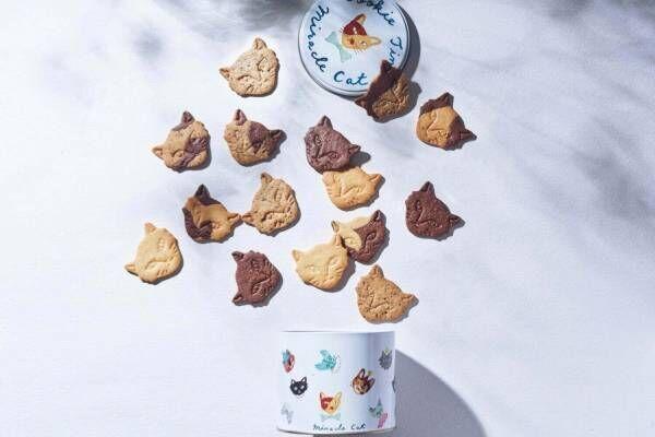 """フェアリーケーキフェアの「ネコクッキー缶」どんなネコに出会えるかは""""開けてからのお楽しみ"""""""