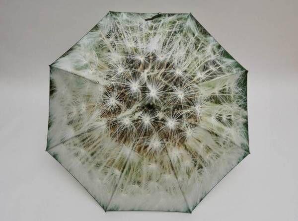 """コシラエルの22年新作傘""""タンポポの綿毛""""やカラフル野菜柄、晴雨兼用で"""