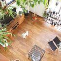お家で楽しむ自然の癒し空間♪森林浴気分を味わえるアイデア&実例集