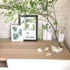 夏は透明素材で涼しさを演出☆夏向きインテリアでお部屋を飾っちゃおう!