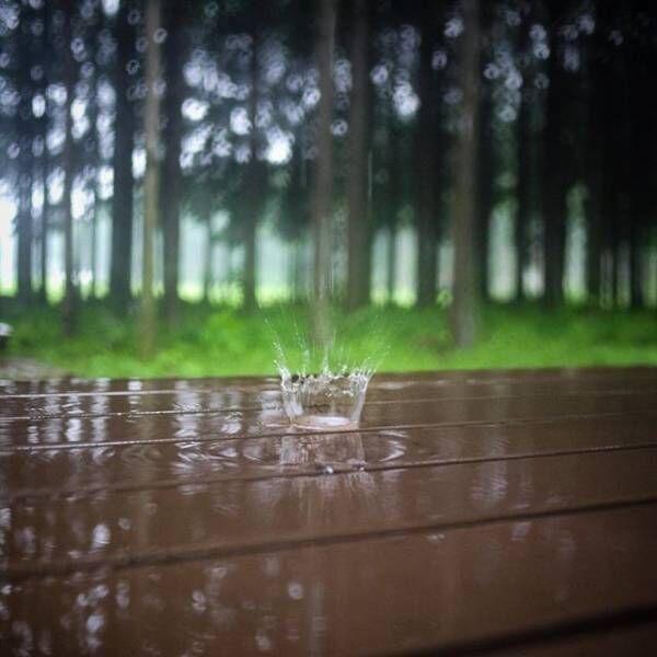 雨が楽しみになる!?梅雨の時期でも快適に過ごせるアイテムでジメジメした気分を吹き飛ばそう☆