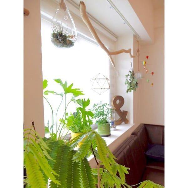 お部屋の雰囲気がさらにアップ♪おしゃれな窓辺のインテリアコーディネート