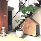 猫のいる生活♡インテリアにこだわりながら猫が快適に暮らせるお部屋に!