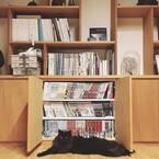 手放せない大切な漫画の収納に!見せるor隠す収納方法をご紹介します♪
