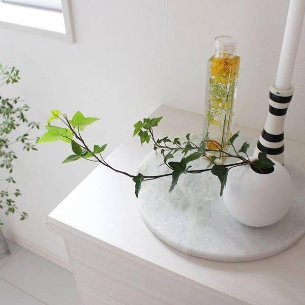 色とりどりの植物を標本に♪ハーバリウムの楽しみ方をご紹介します☆