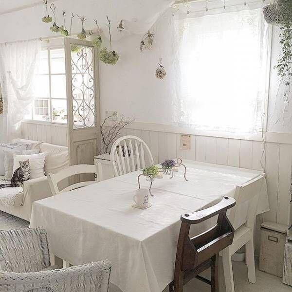 真っ白なテーブルクロス