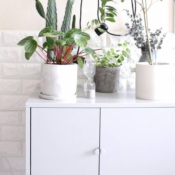 【IKEA】のキャビネットがすごい!モダンな家具を活かしたインテリア