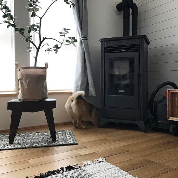エコな暖房器具