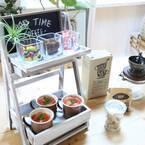【連載】ダイソーとセリアがフィット!塗料とボンドで作る2段カフェトレイ