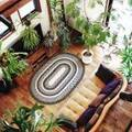 お部屋に置いてもプレゼントにも♪人気の観葉植物5選をご紹介します!