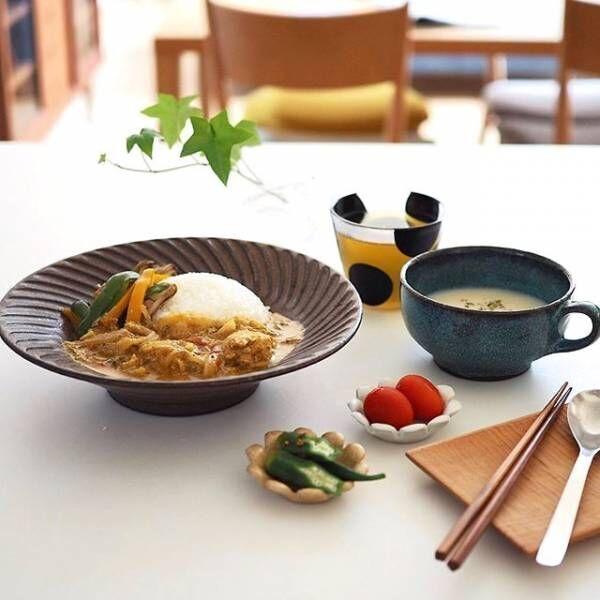 器で定番の家庭料理が見違える!おすすめの「カレー皿」をご紹介☆