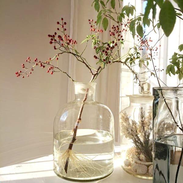 冬にぴったりの枝ものアレンジフラワー☆お部屋にナチュラルな潤いをプラス!