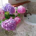しっとり上品♪紫陽花を飾ってインテリアをおしゃれに演出してみませんか?