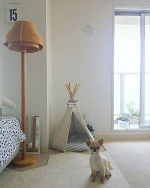 テントをインテリアに取り入れた実例集♡DIYやおすすめアイテムもご紹介!