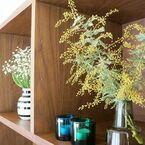 お部屋に飾ろう♡春を呼ぶイエローのミモザのアレンジアイディア集