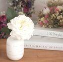 お部屋の中を華やかに!春にぴったりなお花を飾って楽しむアイディア