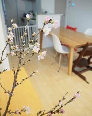 春といえば思い浮かぶのがこの花♡大好きな桜をお部屋に飾りたい!