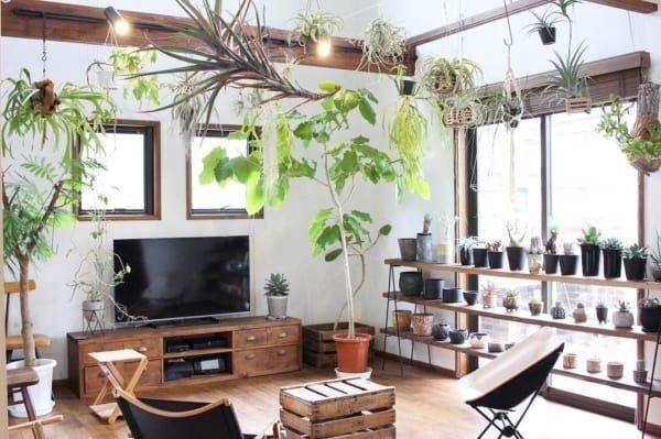 「スタイリッシュなお部屋×観葉植物」でお洒落な空間作り☆魅力あふれるお部屋にするアイデア