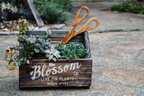 【連載】この春から始めたいDIYにピッタリ!簡単木工で古材風のプランターを作ろう!
