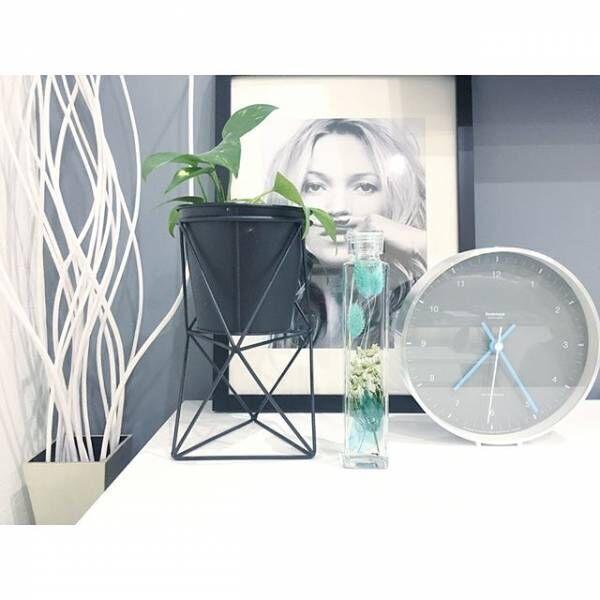 新しい植物の鑑賞方法!ハーバリウムでお部屋を素敵な空間にしよう
