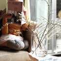 部屋に彩りをプラス!春の植物を使ったインテリアコーディネート