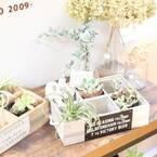 【連載】アンティーク風ガーデンボックスを作ろう!
