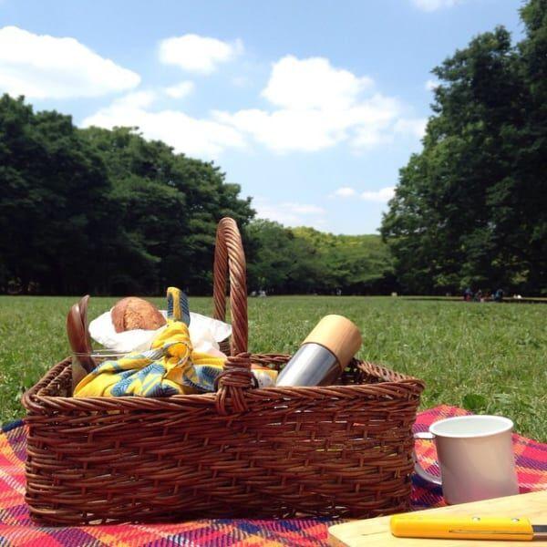お花見やピクニックに大活躍♪オシャレな《お弁当箱・水筒・バスケット》特集♡