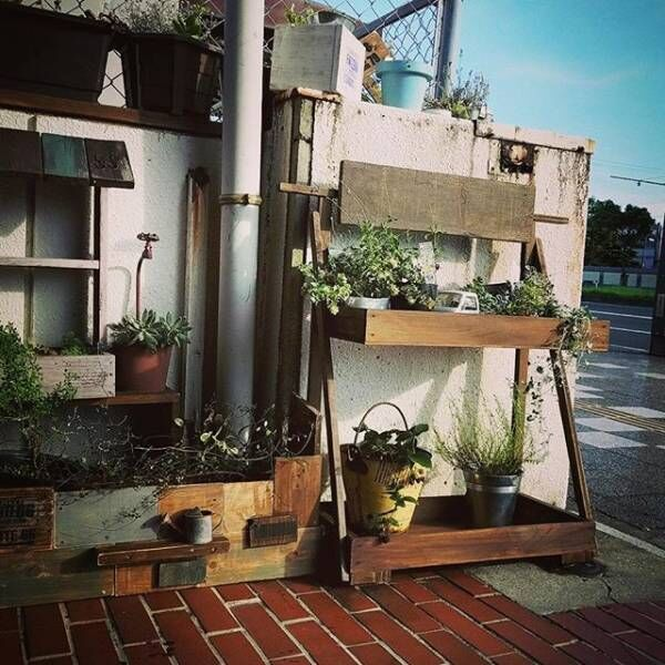 お金をかけずに素敵な庭づくり☆安価で出来るガーデニング方法をご紹介!