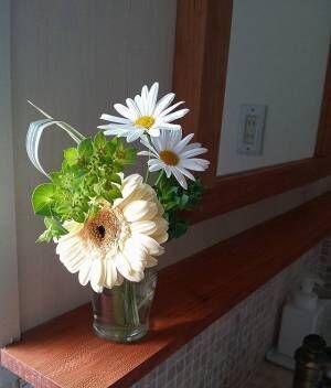 あなたのお部屋に癒しを!グリーンやお花を飾って素敵なお部屋にしよう
