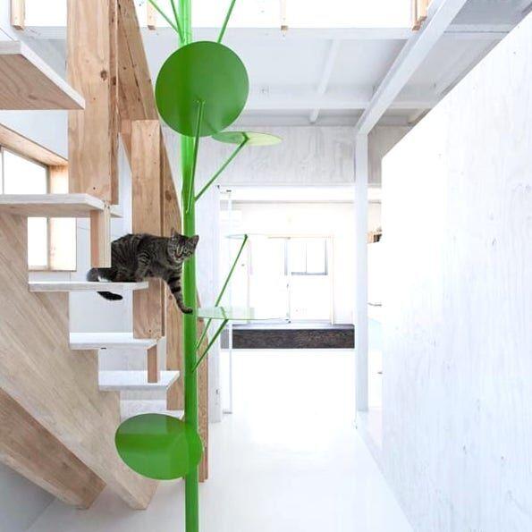 猫をもっと幸せにしよう♡くつろぎの猫ベースのインテリア特集