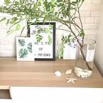 【ニトリ】のグッズでグリーンを飾ろう!おしゃれな花瓶やフェイクグリーンなどご紹介☆
