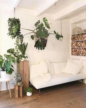 その温かみ、やみつきに♡木をアピールした心地よいおうちづくりの秘密をお教えします