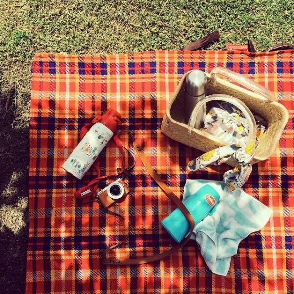 天気のいい日は外に出かけたい!かわいくおしゃれにピクニックを楽しもう♡