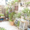 花咲く季節だからお庭やベランダも素敵にしたい!おしゃれなガーデンインテリア特集